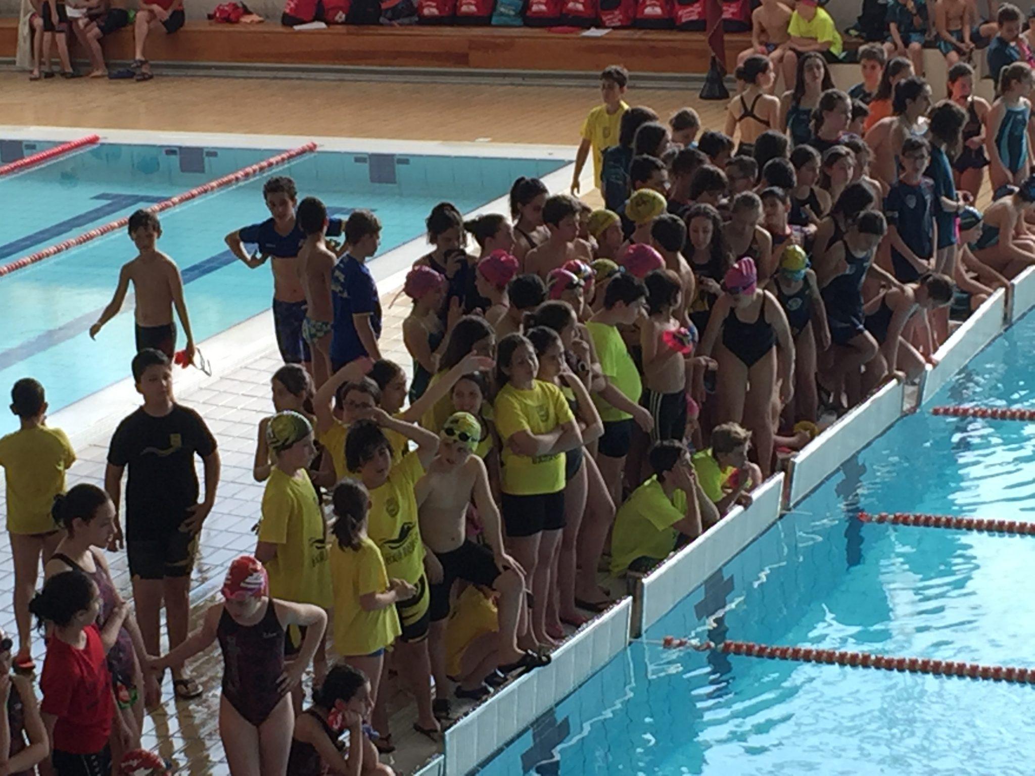 Agenda del fin de semana comienza la nataci n deportiva nautica portugalete - Piscinas de portugalete ...